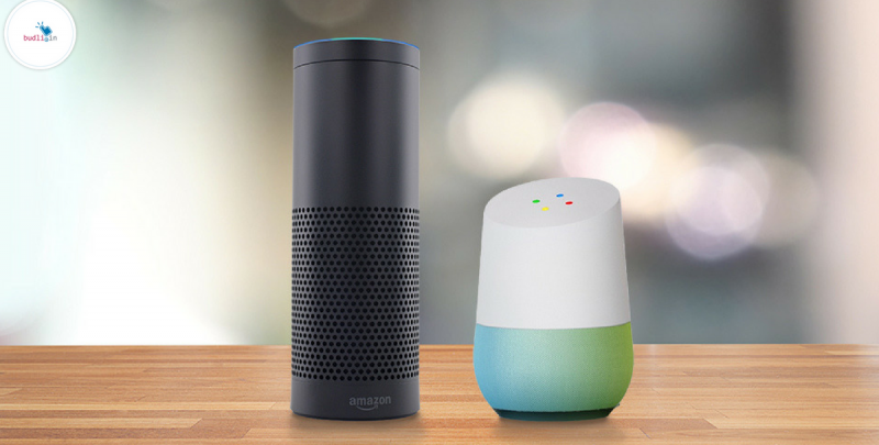 Amazing Smart Assistant Amazon Echo and Google Home
